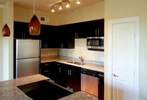 Cielo apt kitchen
