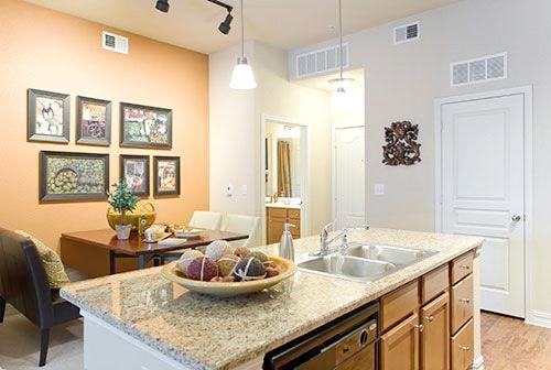 alexan vistas kitchen 2