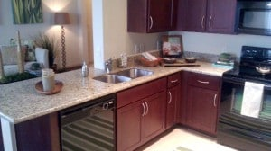 Villas Tech Ridge Pfluggerville apts kitchen