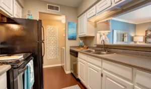 Austin Mitown Apts Kitchen2